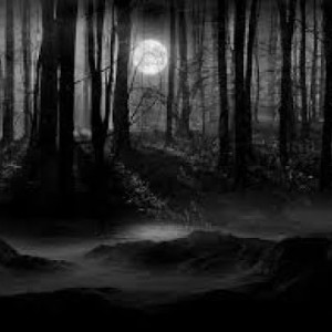 Halloween songs 2020 Dark forest soundtrack - YouTube